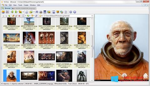 Screenshot XnView para Windows 8.1