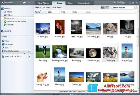 Screenshot RealPlayer para Windows 8.1